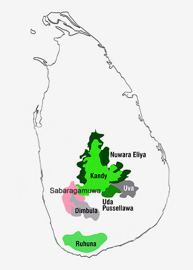Ceylon Tea growing regions