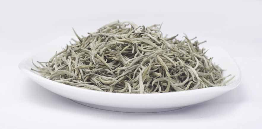 Silver Tips-White Tea